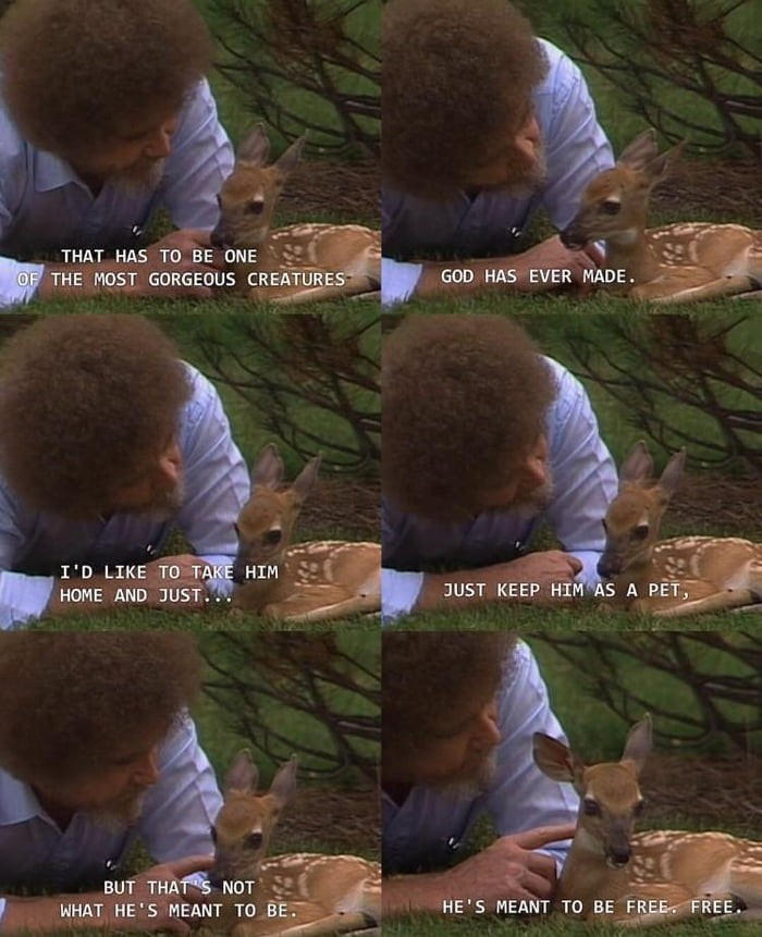 bob-ross-being-wholesome