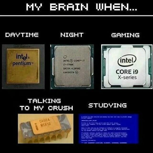 my-brain-when