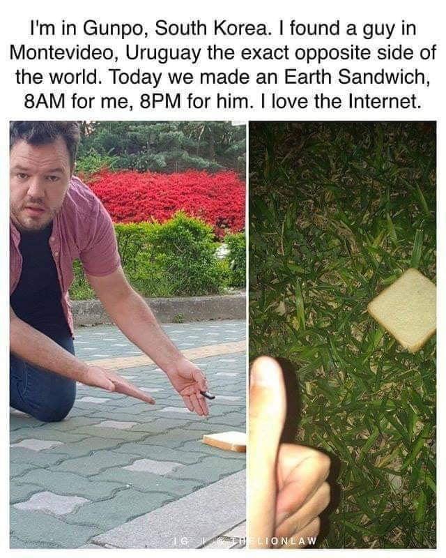 but-are-hotdogs-sandwiches
