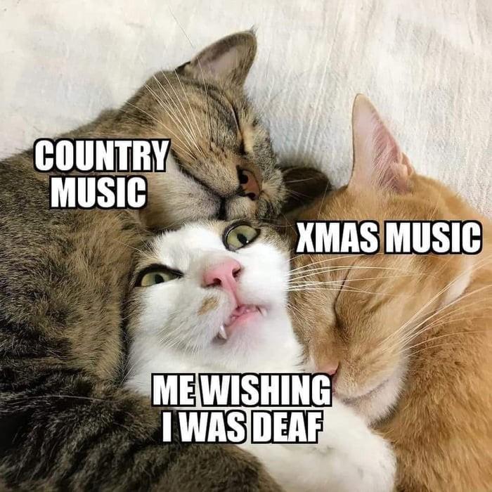 cut-my-ears-off-please