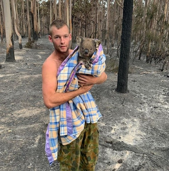 meet-the-hero-that-saves-hundreds-of-koalas-in-australia-fires