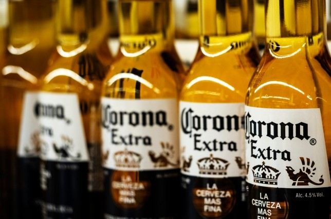 corona-beer-virus-and-coronavirus-what-people-are-googling