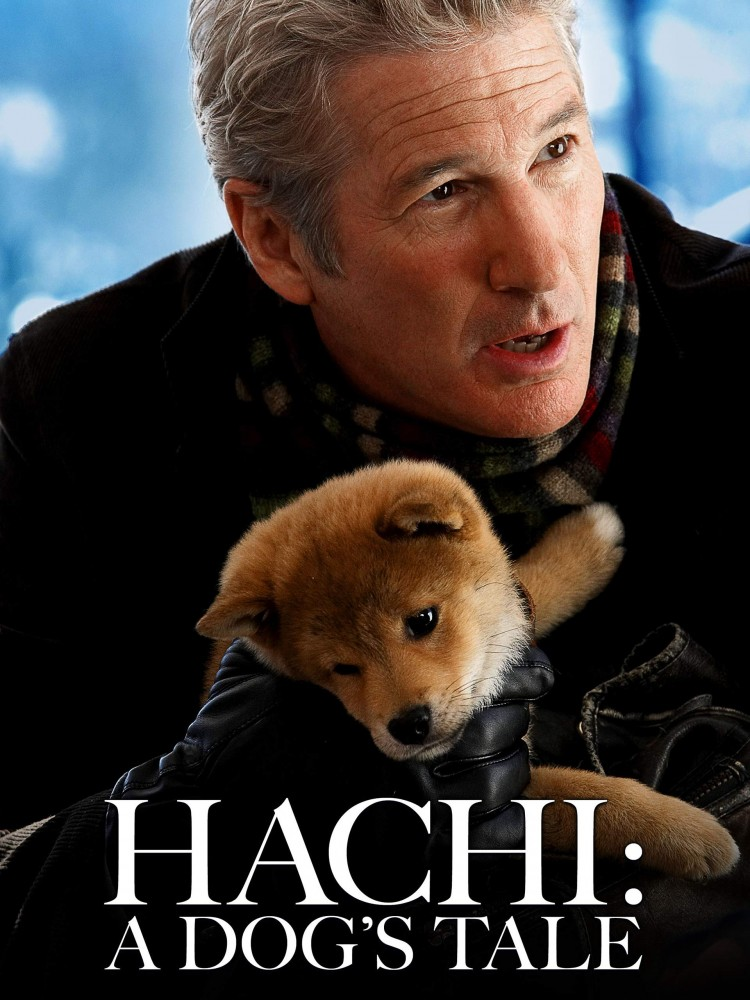 compilation-of-10-emotional-movies-about-animals