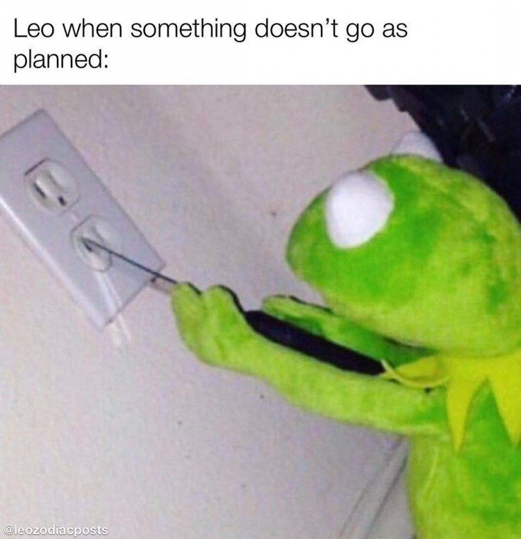 poor-leo
