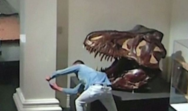 night-at-the-museum-during-pandemic-a-man-broke-into-australias-oldest-museum-and-took-selfies-with-the-dinosaur-exhibit