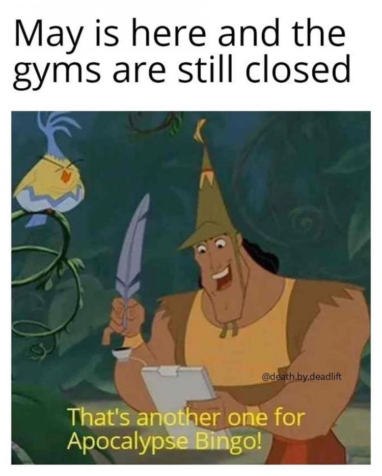 who-loves-gym