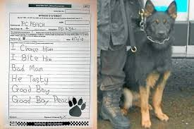 police-dog-forced-to-sign-a-witness-statement
