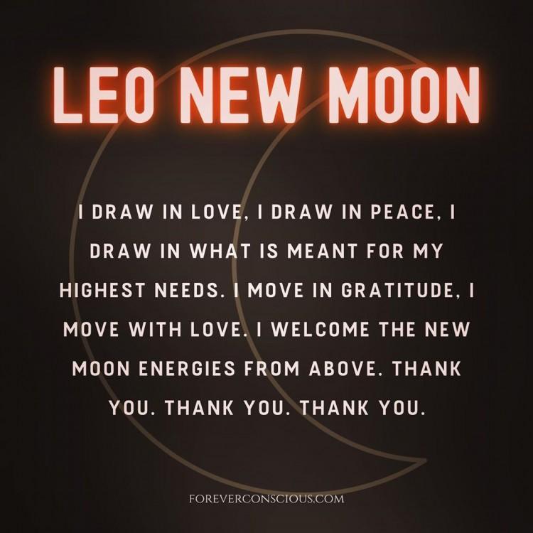 leo-mood