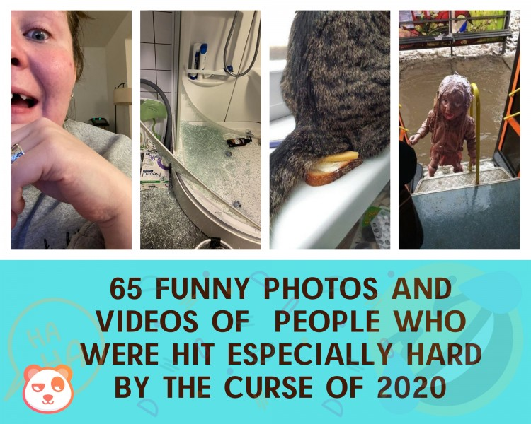 65-funny-photos-and-videos-of-people-who-were-hit-especially-hard-by-the-curse-of-2020
