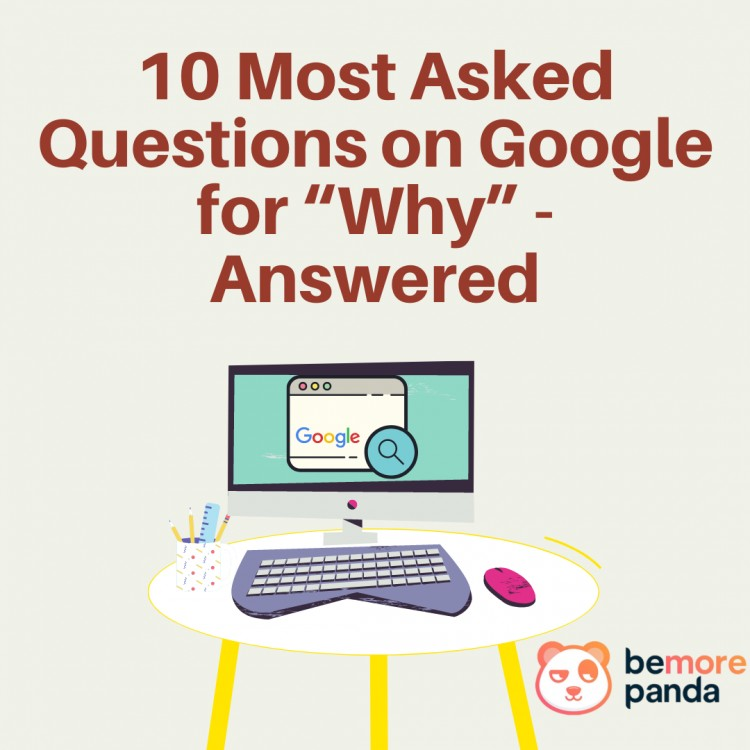 10-most-asked-questions-on-google-for-why-answered