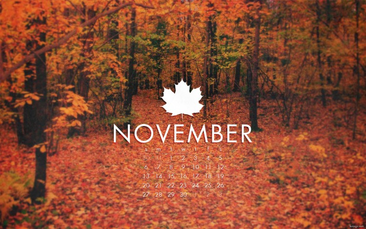 15-reasons-november-is-the-best-month-of-the-year-bemorepanda