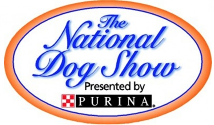 10-fun-and-interesting-facts-about-the-national-dog-show-on-thanksgiving-bemorepanda
