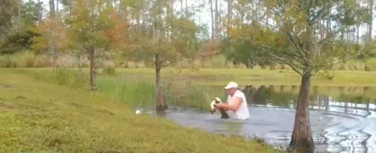 a-man-from-florida-rescued-his-dog-from-the-mouth-of-a-crocodile-it-was-extremely-difficult-to-keep-his-jaw-open