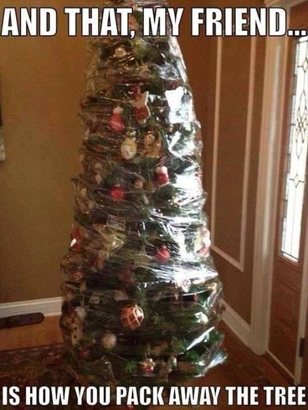 30 funny Christmas trees memes that are going virual during coronavirus lockdown