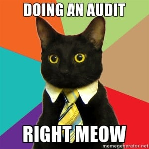 SEO Audit Memes