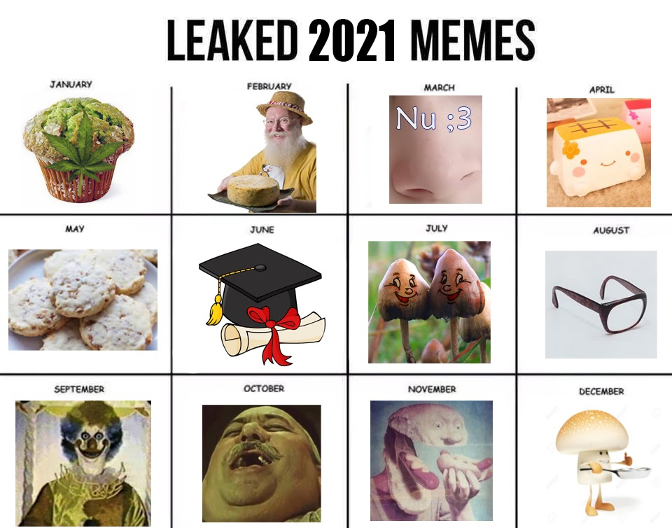 Leaked Memes 2021 | Meme of the Month Calendars | Know Your Meme