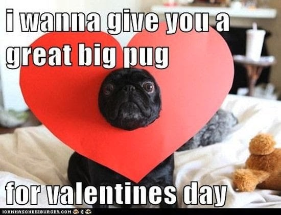 Valentine's Day Memes | POPSUGAR Australia Tech