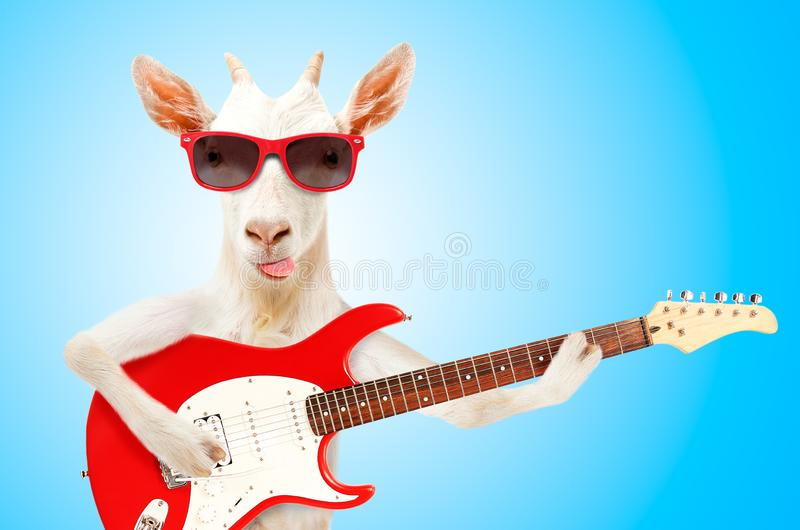 13,572 Funny Goat Photos - Free & Royalty-Free Stock Photos from Dreamstime