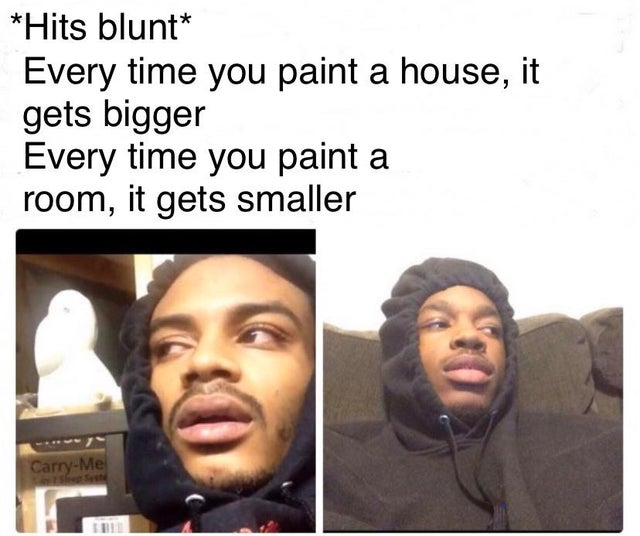 dank meme - hits blunt meme - Hits blunt Every time you paint a house, it gets bigger Every time you paint a room, it gets smaller CarryMe