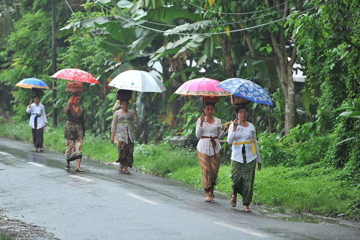 Planning a Trip to Bali during the Rainy Season - Lotus Bungalows