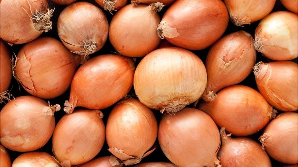 """Картинки по запросу """"onions"""""""