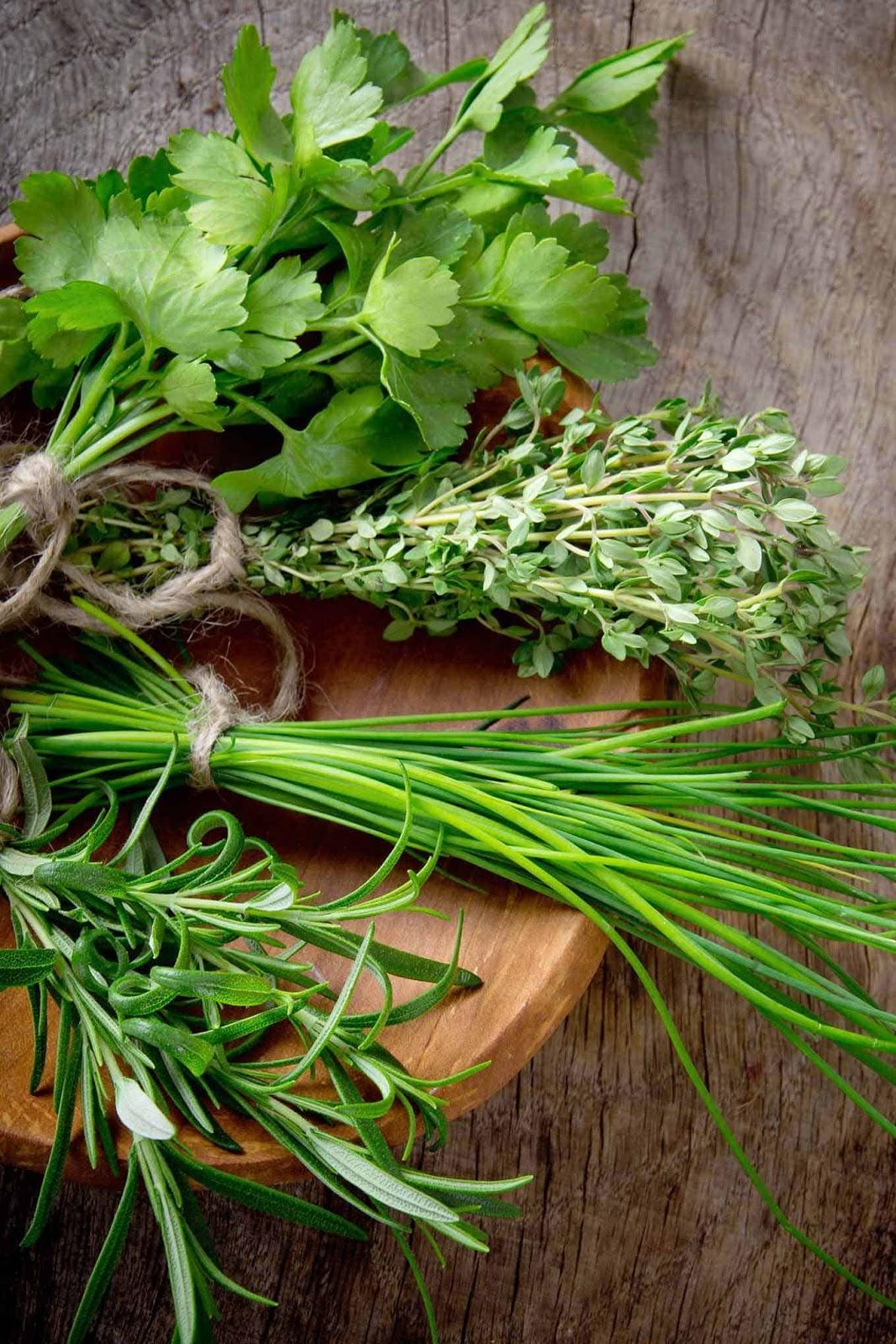 """Картинки по запросу """"fresh herbs"""""""