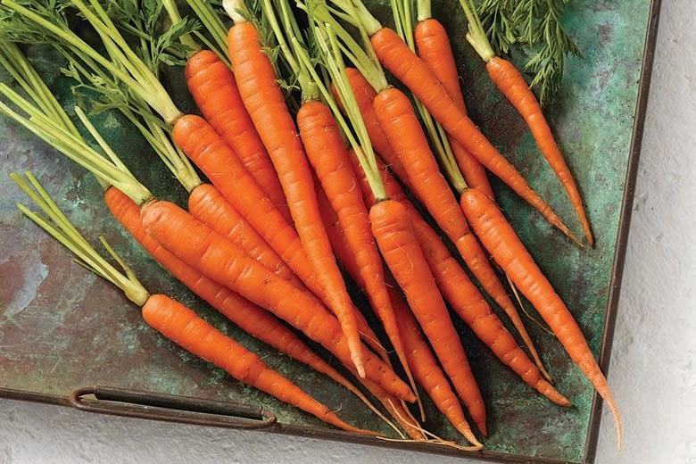 """Картинки по запросу """"carrot"""""""