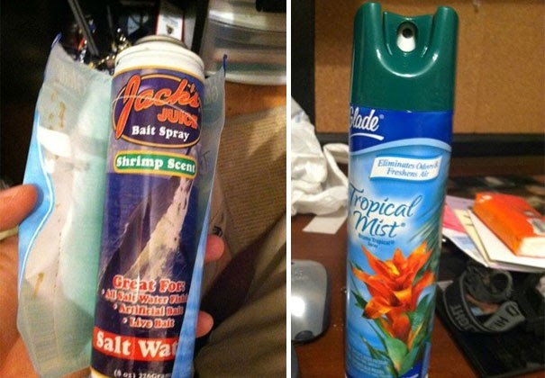 Replace Air Freshener With Shrimp Scent