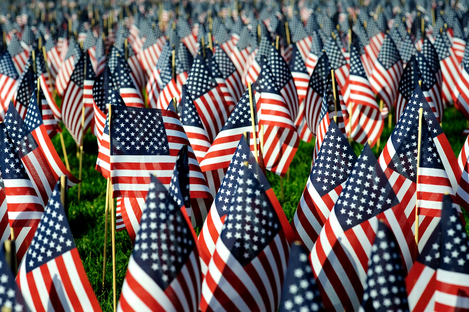 The History of Memorial Day: 7 Facts Every American Should Know | Better  Homes & Gardens