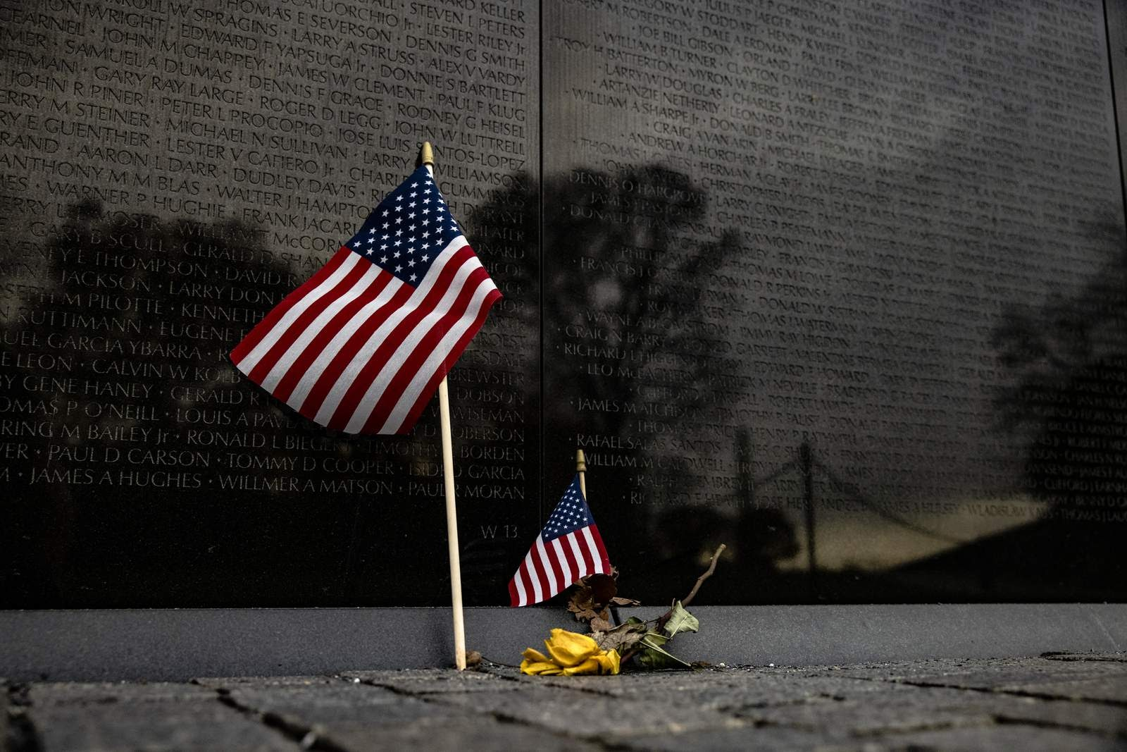 What exactly is the difference between Veterans Day and Memorial Day?