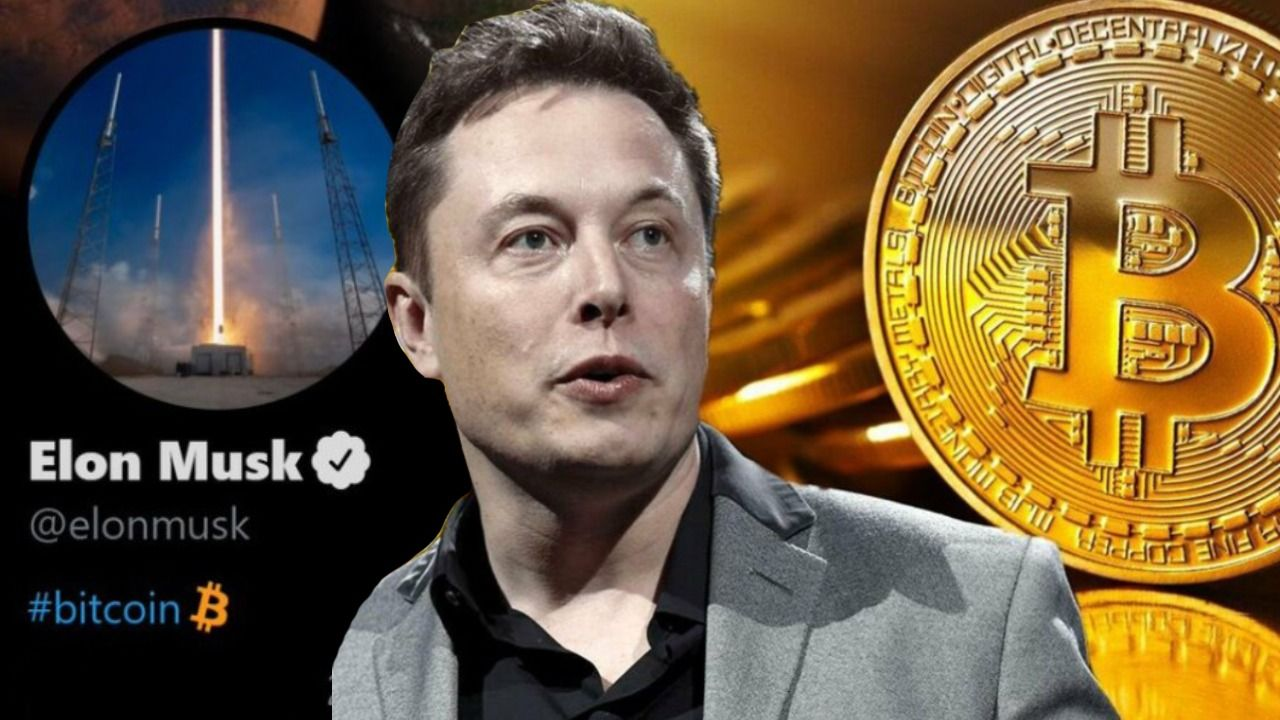 Elon Musk says He Hasn't Sold any of his Bitcoins - NapBots