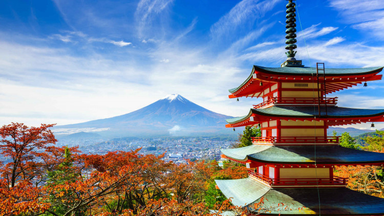 top-50-interesting-facts-about-japan-a-unique-country