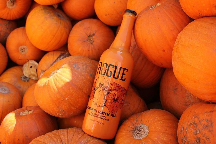 В США очень много пивоварен готовят тыквенное пиво. Например, Rouge сама выращивает овощи для пива, собирает их в августе, высушивает, и к сентябрю на полках появляется свежий тыквенный эль / Фото: Rouge