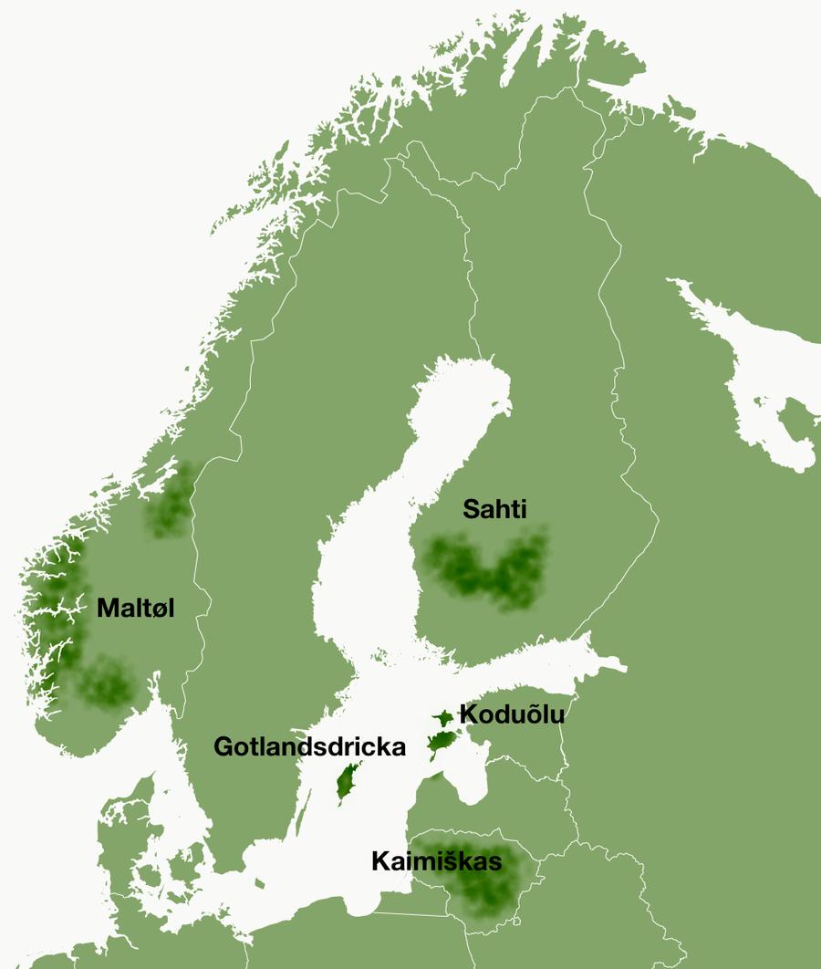Область распространения сахти и других скандинавских пивных напитков / Фото: Pivo.by